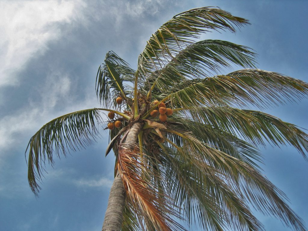 4 Ways SWFL Rental Property Owners Can Prepare for Hurricane Season